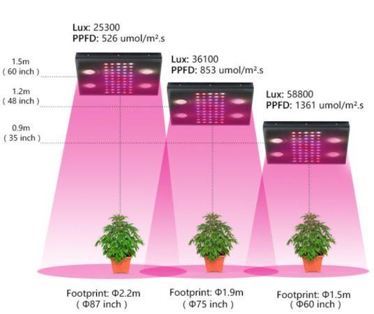 PPFD value range